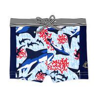 Odjeća Dječak  Kupaći kostimi / Kupaće gaće Petit Bateau FEUILLAGE Multicolour