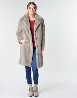Odjeća Žene  Kaputi Oakwood CYBER Taupe