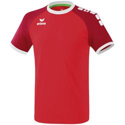 Odjeća Muškarci  Majice kratkih rukava Erima Maillot  Zenari 3.0 rouge/blanc