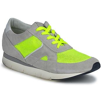 Obuća Žene  Niske tenisice OXS GEORDIE Grey / Žuta