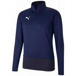 Odjeća Muškarci  Gornji dijelovi trenirke Puma Training top  Teamgoal violet foncé/bleu nuit