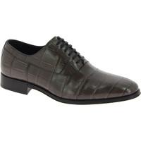 Obuća Muškarci  Derby cipele D&G CA5751 A2338 80720 grigio