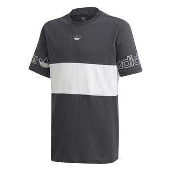 Odjeća Dječak  Majice kratkih rukava adidas Originals PANEL TEE Siva / Bijela