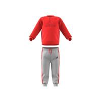 Odjeća Djeca Dječji kompleti adidas Performance MH LOG JOG FL Red / Siva
