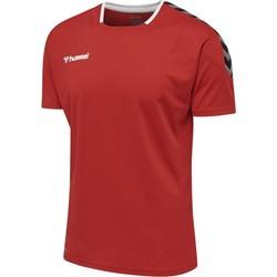 Odjeća Majice kratkih rukava Hummel Maillot  Authentic Poly HML rouge