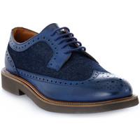Obuća Muškarci  Derby cipele Frau SIENA JEANS BLU Blu