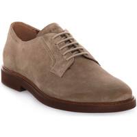 Obuća Muškarci  Derby cipele Frau SUEDE SUGHERO Beige
