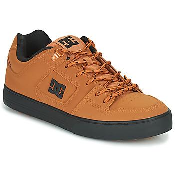 Obuća Muškarci  Niske tenisice DC Shoes PURE WNT Smeđa