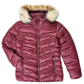 Odjeća Djevojčica Pernate jakne Kaporal MADO Bordo