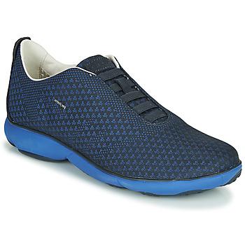 Obuća Muškarci  Niske tenisice Geox U NEBULA E Blue