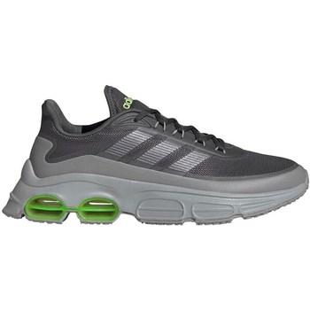 Obuća Muškarci  Running/Trail adidas Originals Quadcube