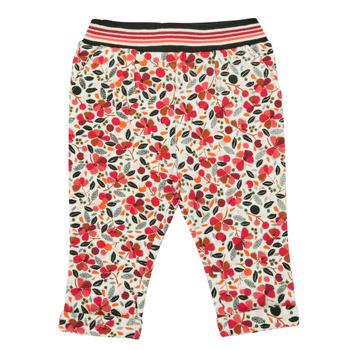 Odjeća Djevojčica Tajice Catimini CR23003-19 Multicolour