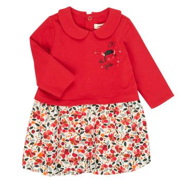 Odjeća Djevojčica Kratke haljine Catimini CR30043-38 Multicolour