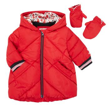 Odjeća Djevojčica Pernate jakne Catimini CR42013-38 Red