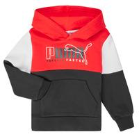 Odjeća Dječak  Sportske majice Puma ALPHA HOODY Multicolour