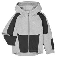 Odjeća Dječak  Sportske majice Puma EVOSTRIPE HOODED JACKET Siva