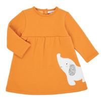 Odjeća Djevojčica Kratke haljine Noukie's Z050083 Narančasta