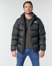 Odjeća Muškarci  Pernate jakne The North Face DIABLO DOWN HOODIE Crna