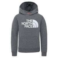 Odjeća Djeca Sportske majice The North Face DREW PEAK HOODIE Siva