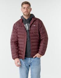 Odjeća Muškarci  Pernate jakne Levi's PRESIDIO PACKABLE JACKET Sassafras