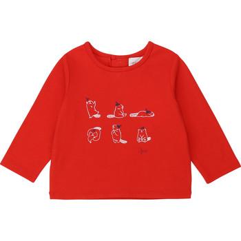 Odjeća Djevojčica Majice dugih rukava Carrément Beau Y95252 Red