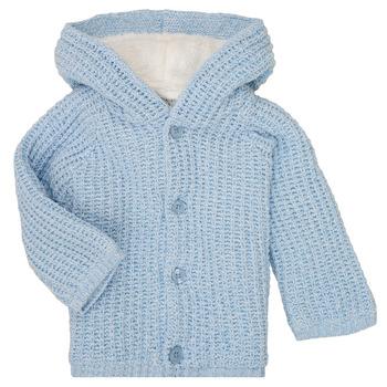 Odjeća Dječak  Kaputi Carrément Beau Y96053 Blue