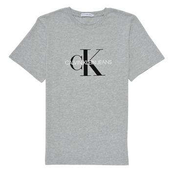 Odjeća Djeca Majice kratkih rukava Calvin Klein Jeans MONOGRAM Siva