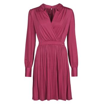 Odjeća Žene  Kratke haljine Marciano PLAYA DRESS Bordo