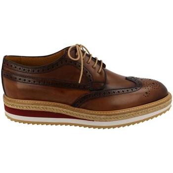 Obuća Muškarci  Derby cipele Calce  Beige