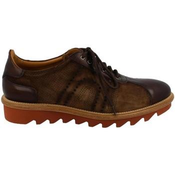 Obuća Muškarci  Derby cipele & Oksfordice Calce  Marrón