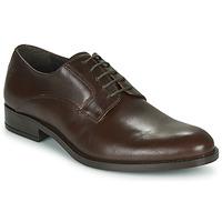 Obuća Muškarci  Derby cipele Carlington NOCOLA Smeđa