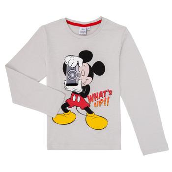 Odjeća Dječak  Majice dugih rukava TEAM HEROES  MICKEY Siva