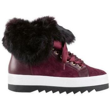 Obuća Žene  Čizme za snijeg Högl Cozy Vino Booties Purple
