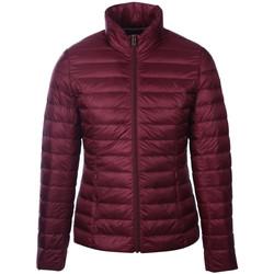 Odjeća Žene  Pernate jakne JOTT Cha ml basique Bordo