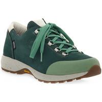 Obuća Žene  Pješaćenje i planinarenje Lomer BALI MTX PINE Verde