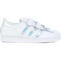 Obuća Djeca Niske tenisice adidas Originals Superstar CF C Bijela