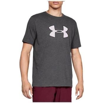 Odjeća Muškarci  Majice kratkih rukava Under Armour Big Logo SS Tee Siva