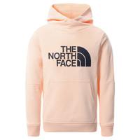 Odjeća Djevojčica Sportske majice The North Face DREW PEAK HOODIE 2.0 Ružičasta