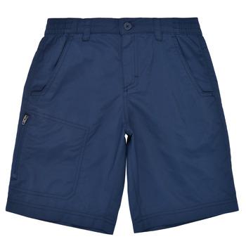 Odjeća Dječak  Bermude i kratke hlače Columbia SILVER RIDGE SHORT Blue