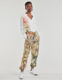 Odjeća Žene  Lagane hlače / Šalvare Desigual TOUCHE Bež