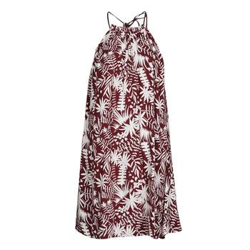 Odjeća Žene  Kratke haljine Freeman T.Porter ROCCA MOROCCO Bordo