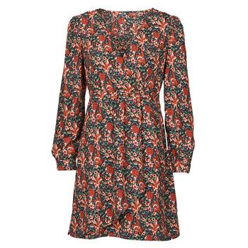 Odjeća Žene  Kratke haljine Betty London NOMIM Crna / Red