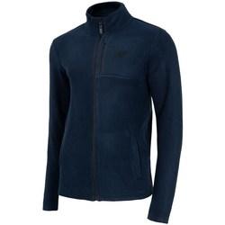 Odjeća Muškarci  Flisevi 4F PLM003