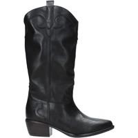Obuća Žene  Gležnjače Grace Shoes 544101 Crno