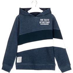 Odjeća Djeca Sportske majice Losan 023-6002AL Plava
