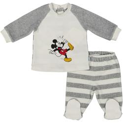 Odjeća Djeca Odijela i kravate Melby 20Q2250DN Siva