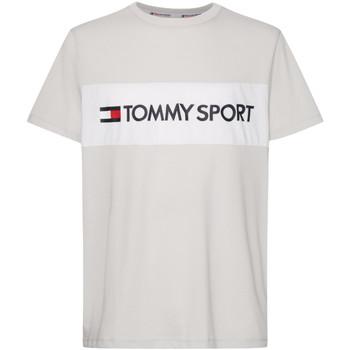 Odjeća Muškarci  Majice / Polo majice Tommy Hilfiger S20S200375 Siva