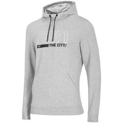 Odjeća Muškarci  Sportske majice 4F BLM017 Siva