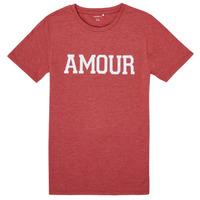 Odjeća Djevojčica Majice kratkih rukava Name it NKFTHULIPPA Red