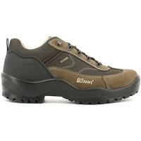 Obuća Muškarci  Pješaćenje i planinarenje Grisport 10670S44G Smeđa